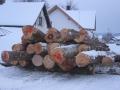 02-brennholz-januar-2012